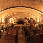 wijn importeur